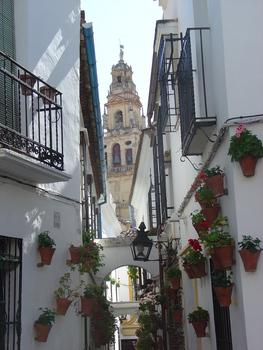 20130717222430-calle_de_flores_cordoba