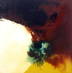 20130718193847-etinglof__cuspate__36_x36_oil_on_panel_2011