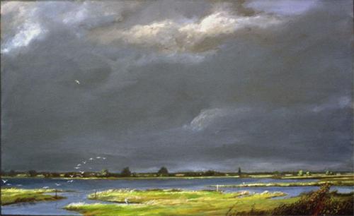 _27twenty-five-birds_-wetland