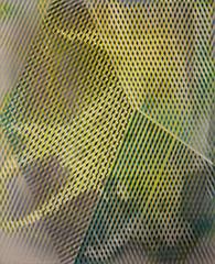 20130802084504-yellow_30x240