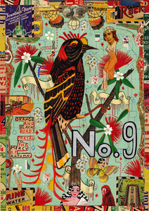 20130725025015-83csn-fitzpatrick__tony-hawiian_bird_125-2012-dpi125_copy