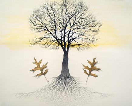 20130726173035-treeoflife_large