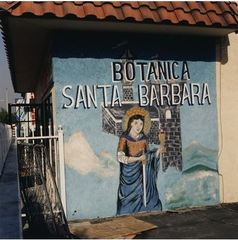 20130802200523-thomas_mcgovern__botanica_santa_barbara__chromogenic_print__19_x_19