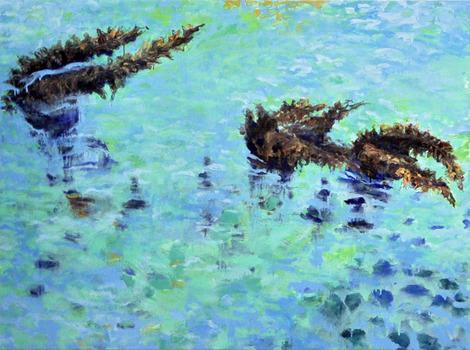 20130803214051-4-20-13_seaweed__2_00_web_res