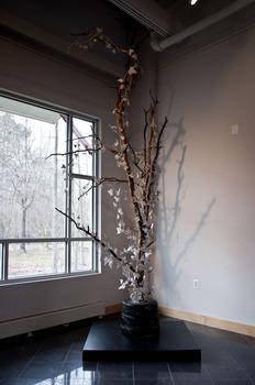 20130805174936-tree_web