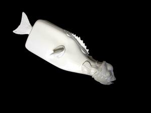 20130806100405-pesce15