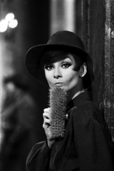 20130807154125-terry_o_neill_-_audrey_hepburn_-_brush