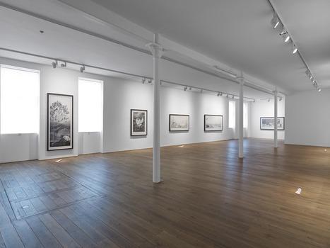20130810003743-pl_installation_gallery_i_web