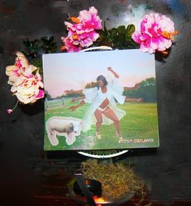 20130810181022-fleurinstallationshivasheepsmall