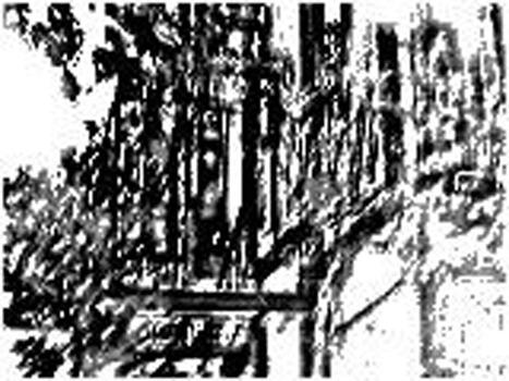 20130817153718-13-_treescape