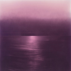 20130822180639-lo_res_ephemeral_murasaki_24x24inches_dye_pigment_resin_on_aluminum_plate_2013_miya_ando_2