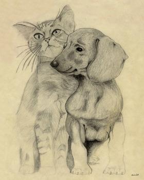20130826051846-kitten___puppy