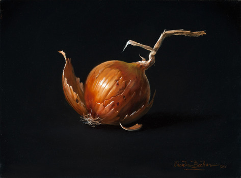 20130902192305-charles-becker_untitled-onion