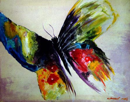 20130903150207-10-butterfly