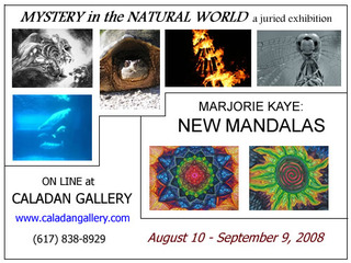 20130904202522-mystery_in_the_natural_world_card