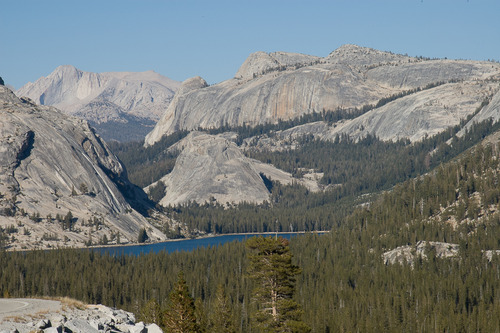 20130906010859-david_bechtol_tenaya_lake_from_olmsted_point
