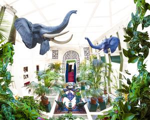 20130917150102-venables_elephant_room__george_eastman_house_2013_klein