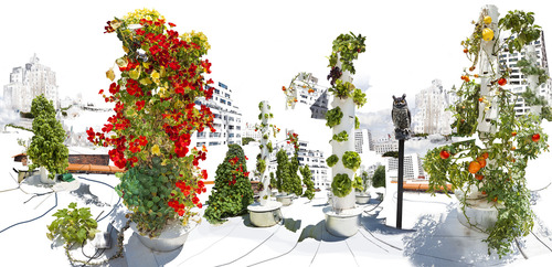 20130917150409-raissa_venables_rooftop_garden_new_york_36_x_74_in_92_x_188_cm_ed5__2_aps_28