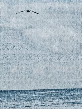 20130919175321-ariel_swartley_wave__bird