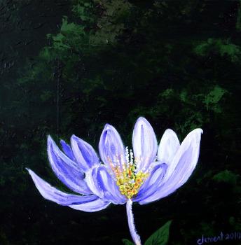 20130927024846-18-lotus