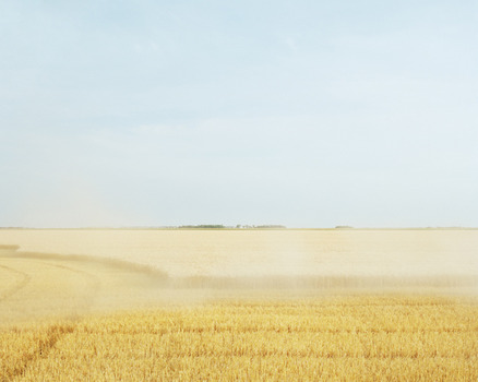 20130930091213-wheat-harvest-color