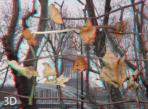 20130930180616-space_collage_of_trees_and_eiffel_tower___in_stereoscopic_3d