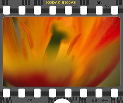 20131008091825-kodak-giv-0005-e100vs