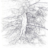 20131010021839-eustace-tree_1