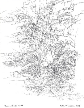 20131010030218-eustace-tree_16