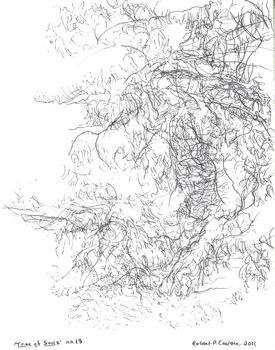 20131010031331-eustace-tree_18