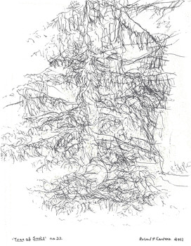 20131010031806-eustace-tree_22