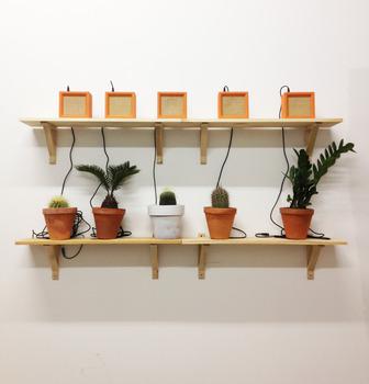 20131017031917-adar_5_plants_5_speakers