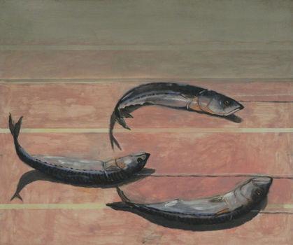 20131017102133-fish_race