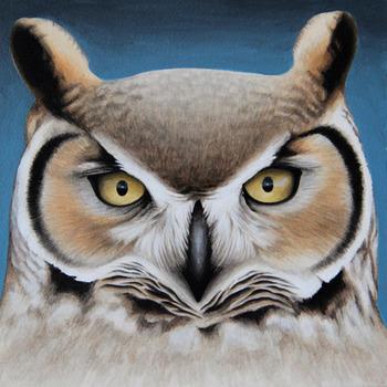 20131023224523-owl_6x6__500x500_