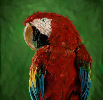 20131026062807-parrot