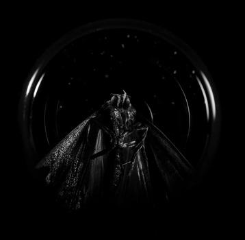 20131026211428-moth_model_copy