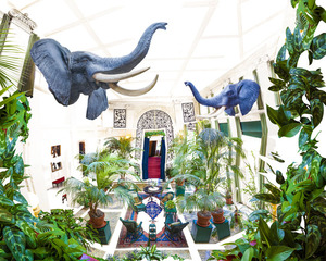 20131029162259-venables_elephant_room__george_eastman_house_2013_klein