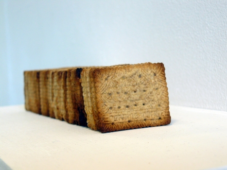 20131101161927-solutions_for_a_volatile_world_biscuits_front_view_small