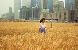 20131109040528-ad_wheatfield_agnesfield_hr_52665342e4631