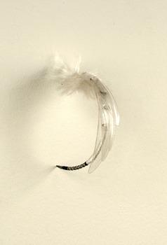 20131122222515-whitenylscudok
