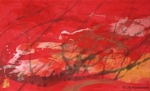 20131125164358-red-2-lilykostrzewa
