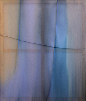 20131126230407-dani-jakob-untitled-2013-silk-color-on-polyester-160x135-cm