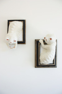 20131203201050-albino012