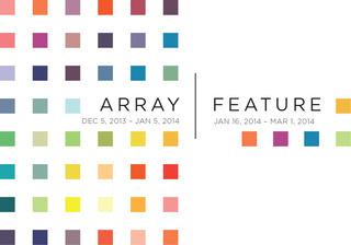 20131205181451-20131126190152-arrayfeature