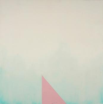 20131210123241-pink_triange