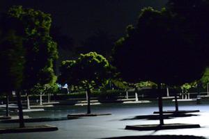 20131213160034-okon_salo