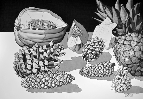20131218003130-cary_bailey_still_life_with_pine_cones_2013_ink_18x26