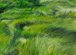 20140105070648-idariu22x28acryliconpapergrassescurrents