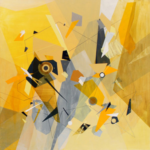 20140114000827-tegeder-yellow_midnight_lo_res
