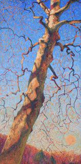 20140115211546-poet_tree_small